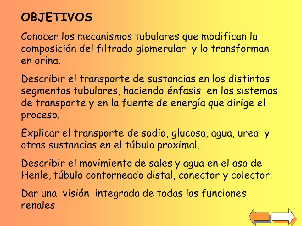FIN CONCLUSIONES Se destacó la subordinación del transporte de una gran variedad de sustancias al transporte activo de sodio............................................................................