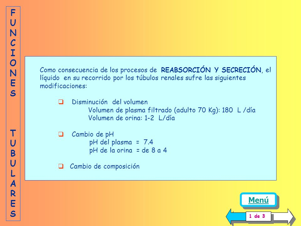 Como consecuencia de los procesos de REABSORCIÓN Y SECRECIÓN, el líquido en su recorrido por los túbulos renales sufre las siguientes modificaciones: Disminución del volumen Volumen de plasma filtrado (adulto 70 Kg): 180 L /día Volumen de orina: 1-2 L/día Cambio de pH pH del plasma = 7.4 pH de la orina = de 8 a 4 Cambio de composición FUNCIONES TUBULARESFUNCIONES TUBULARES Menú 1 de 3