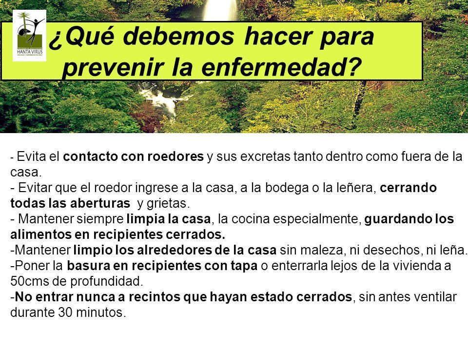 ¿Qué debemos hacer para prevenir la enfermedad? - Evita el contacto con roedores y sus excretas tanto dentro como fuera de la casa. - Evitar que el ro
