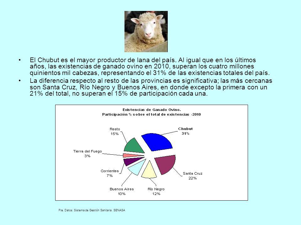 El Chubut es el mayor productor de lana del país. Al igual que en los últimos años, las existencias de ganado ovino en 2010, superan los cuatro millon