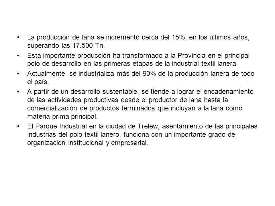 La producción de lana se incrementó cerca del 15%, en los últimos años, superando las 17.500 Tn. Esta importante producción ha transformado a la Provi