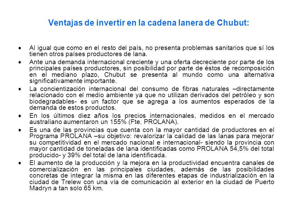 Ventajas de invertir en la cadena lanera de Chubut: Al igual que como en el resto del país, no presenta problemas sanitarios que sí los tienen otros p