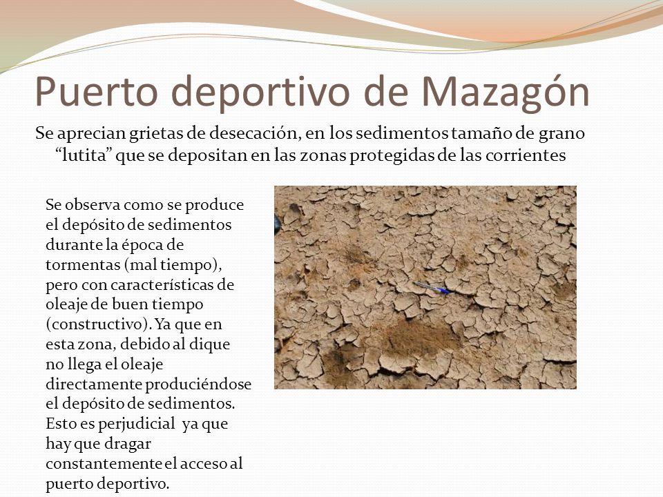 Puerto deportivo de Mazagón Se aprecian grietas de desecación, en los sedimentos tamaño de grano lutita que se depositan en las zonas protegidas de la