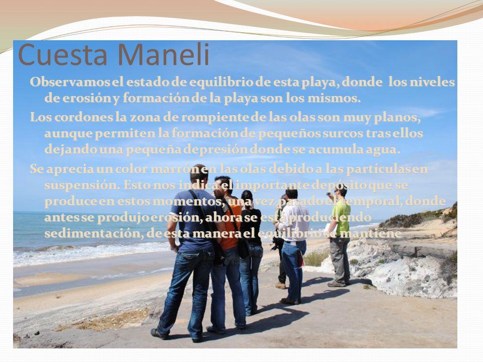 Cuesta Maneli Observamos el estado de equilibrio de esta playa, donde los niveles de erosión y formación de la playa son los mismos. Los cordones la z