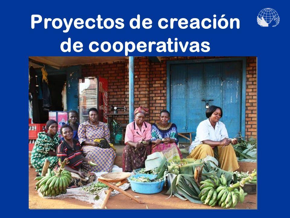 Proyectos de generación de ingresos