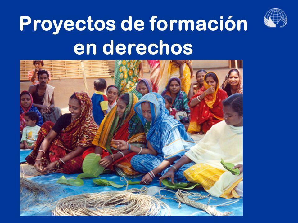 Proyectos de creación de cooperativas