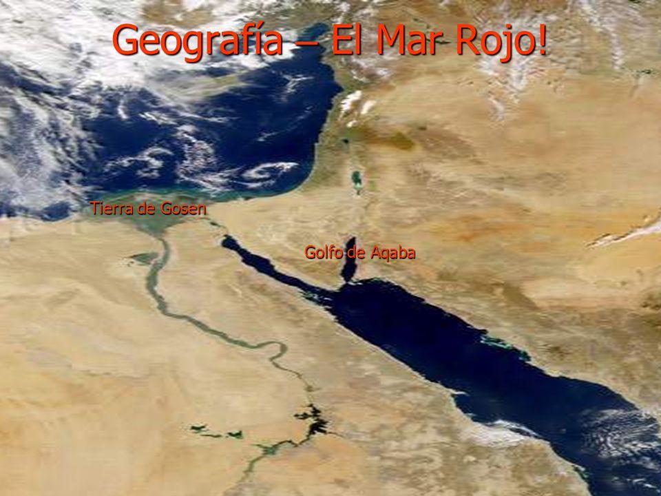 Aaron ayudo a su hermano Moises a sacar de Egipto a 2-3 millones de Israelitas Aaron ayudo a su hermano Moises a sacar de Egipto a 2-3 millones de Isr
