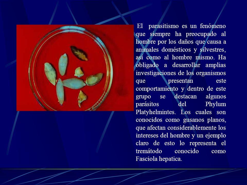 El parasitismo es un fenómeno que siempre ha preocupado al hombre por los daños que causa a animales domésticos y silvestres, así como al hombre mismo.