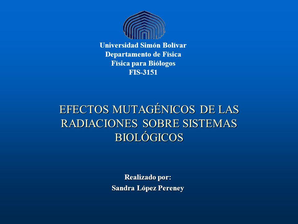 EFECTOS MUTAGÉNICOS DE LAS RADIACIONES SOBRE SISTEMAS BIOLÓGICOS Realizado por: Sandra López Pereney Universidad Simón Bolívar Departamento de Física