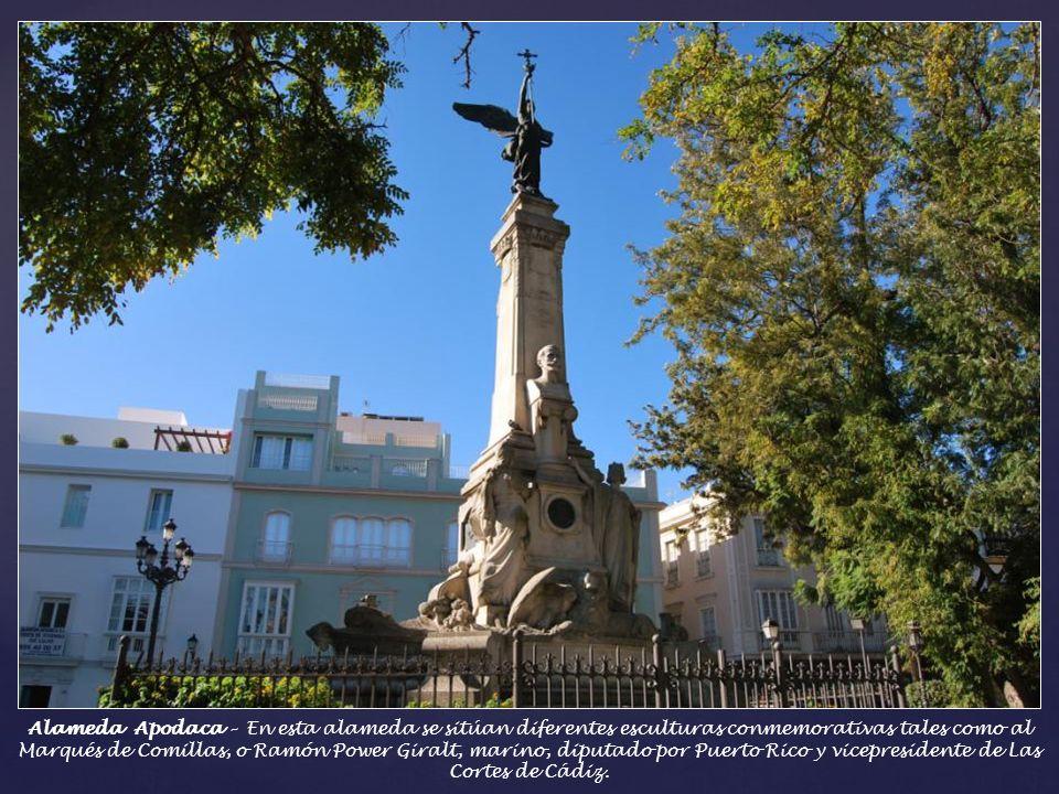 Alameda Apodaca – Ubicada frente a la bahía, se trata de uno de los paseos mas característicos de Cádiz. Su origen se remonta a 1617. Según la descrip