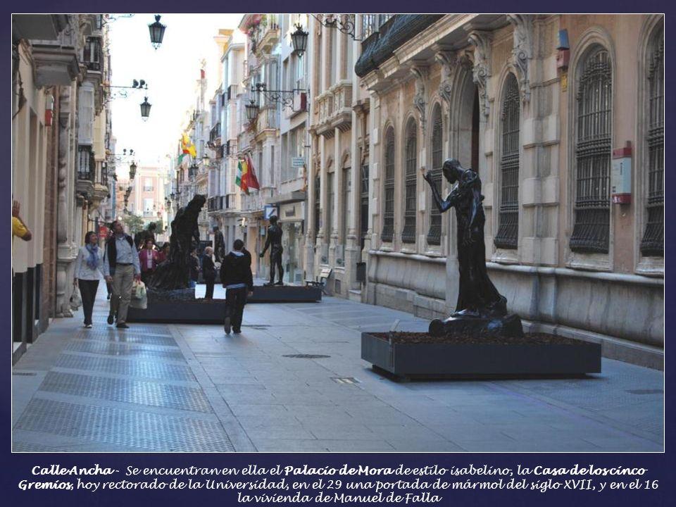 Calle Ancha - Era el centro aristocrático de la ciudad, y el paseo por excelencia. Siempre estaba repleta de personalidades de la política, la literat