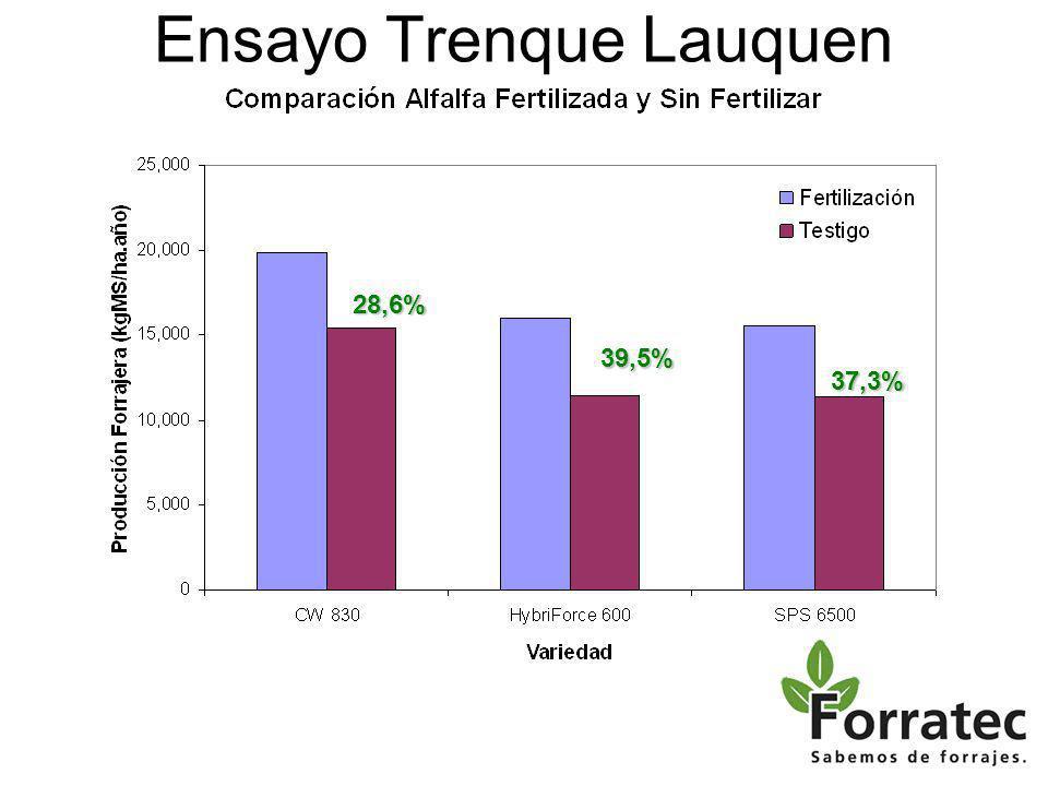 Ensayo Trenque Lauquen 28,6% 39,5% 37,3%