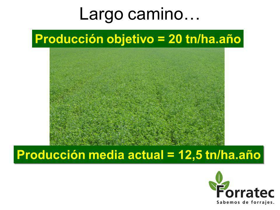 Largo camino… Producción media actual = 12,5 tn/ha.año Producción objetivo = 20 tn/ha.año