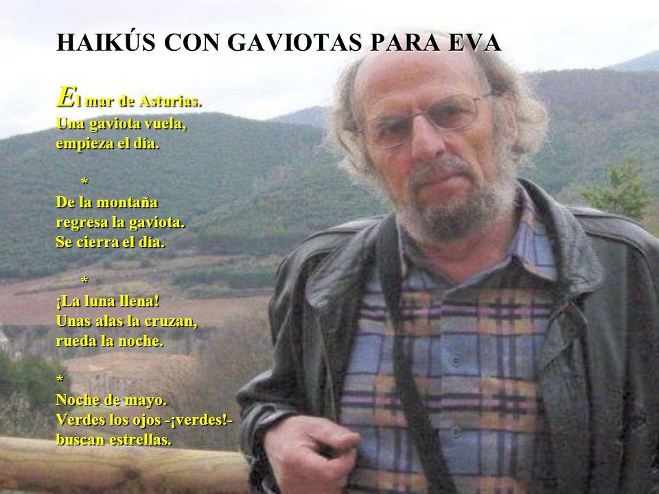 HAIKÚS CON GAVIOTAS PARA EVA E l mar de Asturias. Una gaviota vuela, empieza el día. * De la montaña regresa la gaviota. Se cierra el día. * ¡La luna