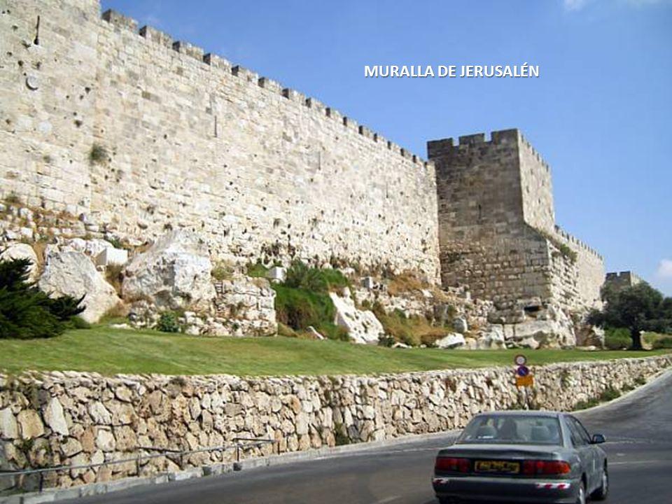 Sábado, 22 de Febrero de 20149 CAMINANDO POR LA CIUDAD ENCONTRAMOS LA MURALLA DE JERUSALÉN