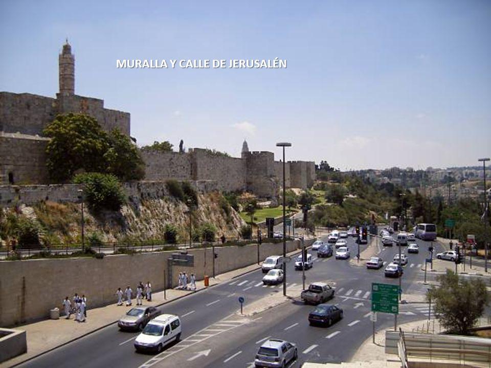 Sábado, 22 de Febrero de 201410 MURALLA DE JERUSALÉN