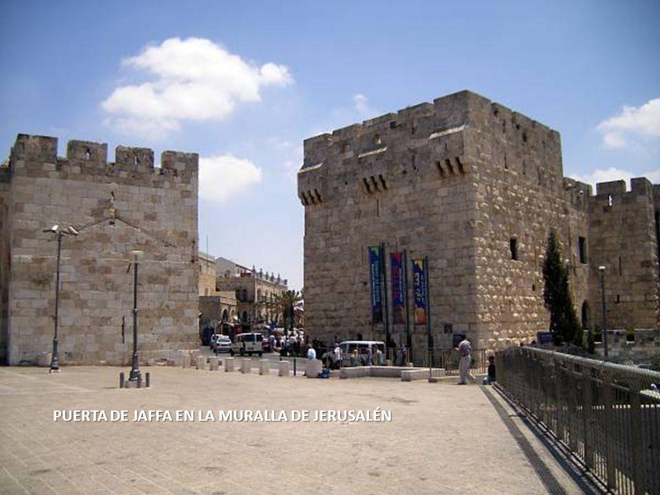 Sábado, 22 de Febrero de 201413 PUERTA DE DAMASCO EN LA MURALLA DE JERUSALÉN