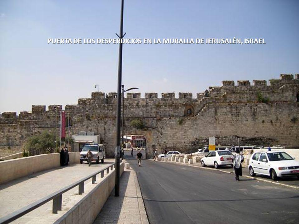 Sábado, 22 de Febrero de 201415 PUERTA DE LOS LEONES EN LA MURALLA DE JERUSALÉN