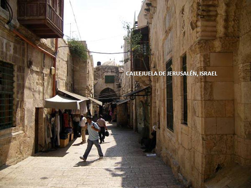 Sábado, 22 de Febrero de 201420 AHORA CAMINEMOS POR LAS CALLES DE JERUSALÉN