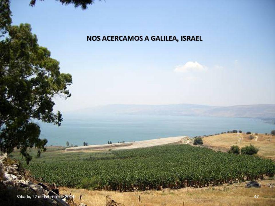 Sábado, 22 de Febrero de 201446 INTERIOR DE LA IGLESIA DE SAN GABRIEL, NAZARET, ISRAEL