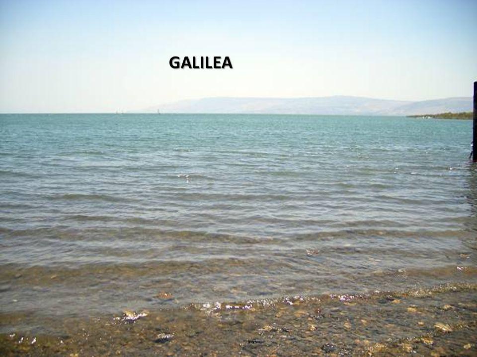 Sábado, 22 de Febrero de 201450 GALILEA