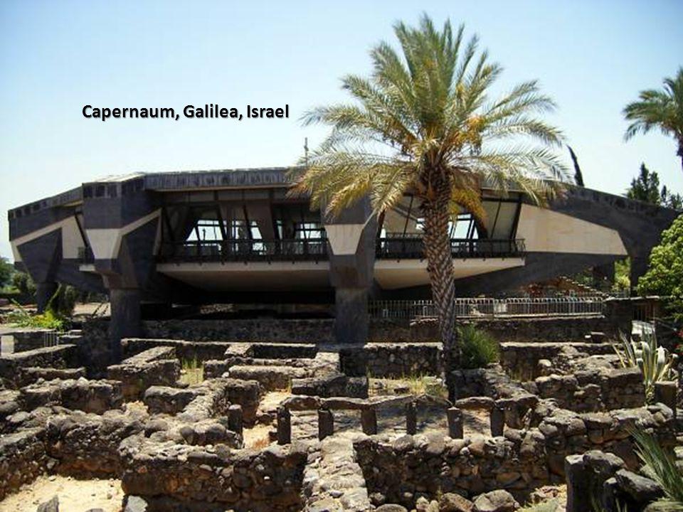Sábado, 22 de Febrero de 201454 Capernaum, Galilea, Israel