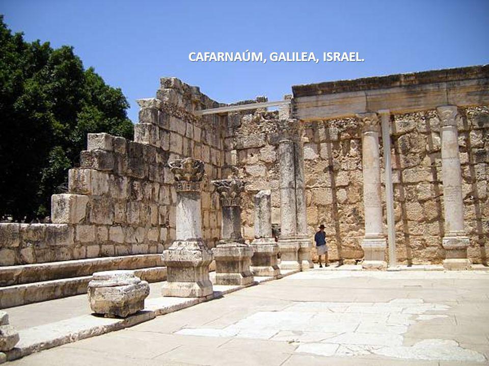 Sábado, 22 de Febrero de 201455 Capernaum, Galilea, Israel