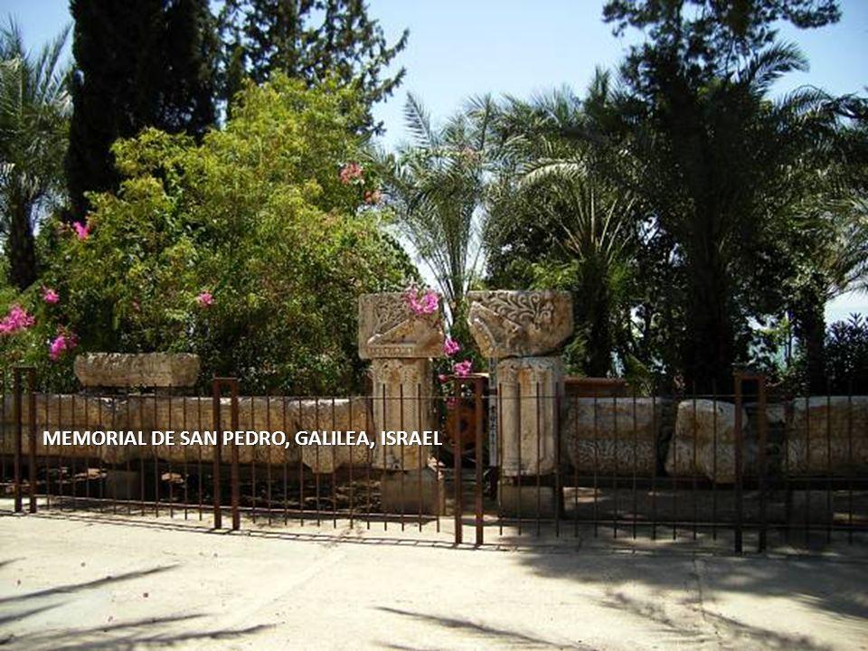 Sábado, 22 de Febrero de 201457 MEMORIAL DE SAN PEDRO, GALILEA, ISRAEL