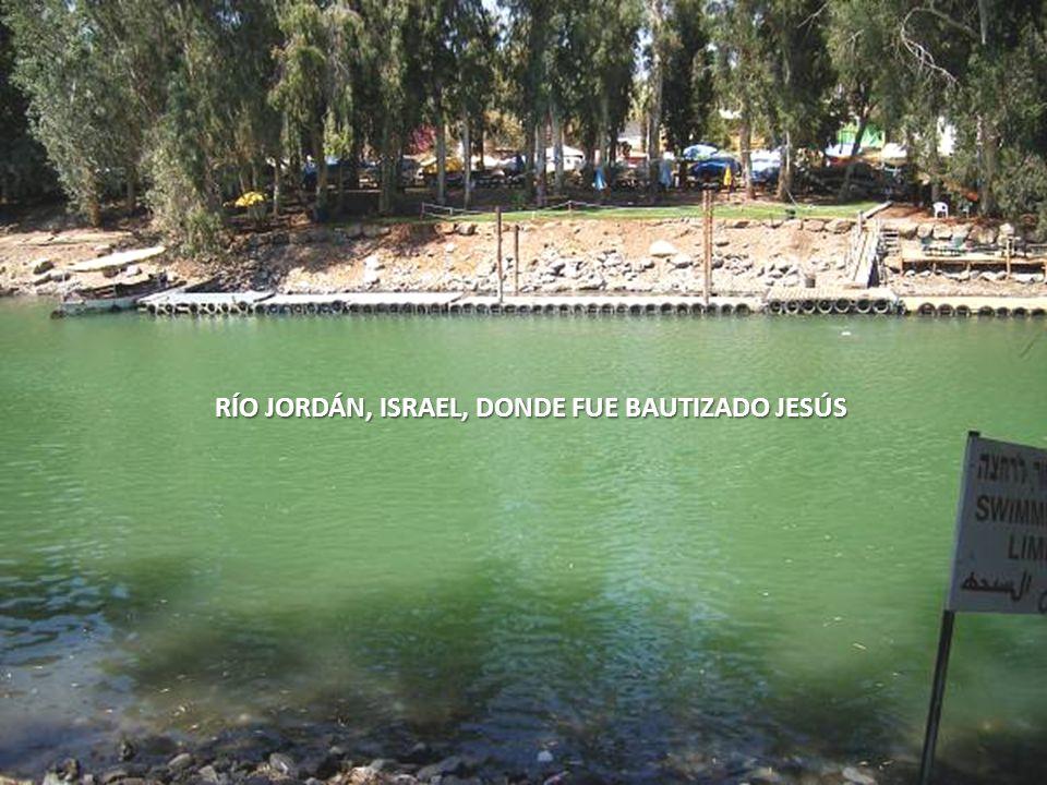 Sábado, 22 de Febrero de 201459 MEMORIAL DE SAN PEDRO, GALILEA, ISRAEL