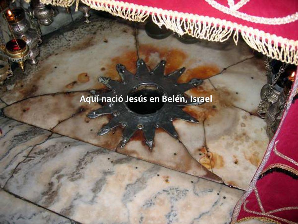 Sábado, 22 de Febrero de 201473 El pesebre donde nació Jesús en Belén, Israel