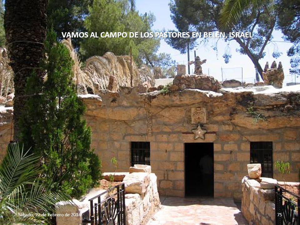 Sábado, 22 de Febrero de 201474 Aquí nació Jesús en Belén, Israel