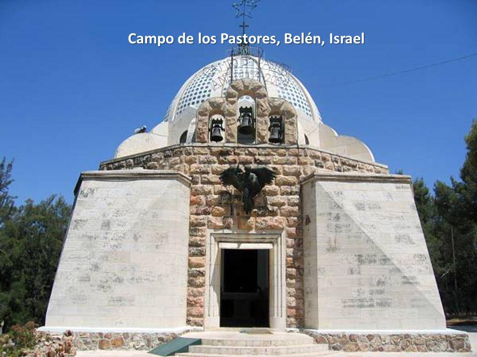 Sábado, 22 de Febrero de 201476 Campo de los Pastores, Belén, Israel