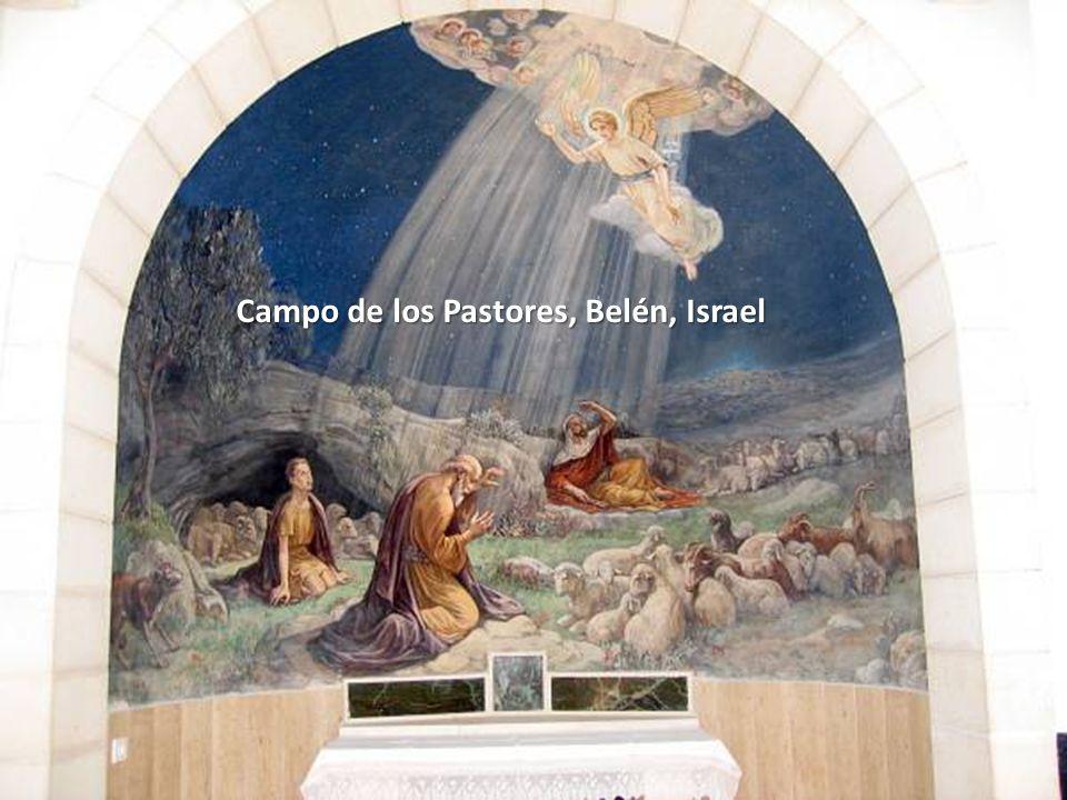 Sábado, 22 de Febrero de 201477 Campo de los Pastores, Belén, Israel