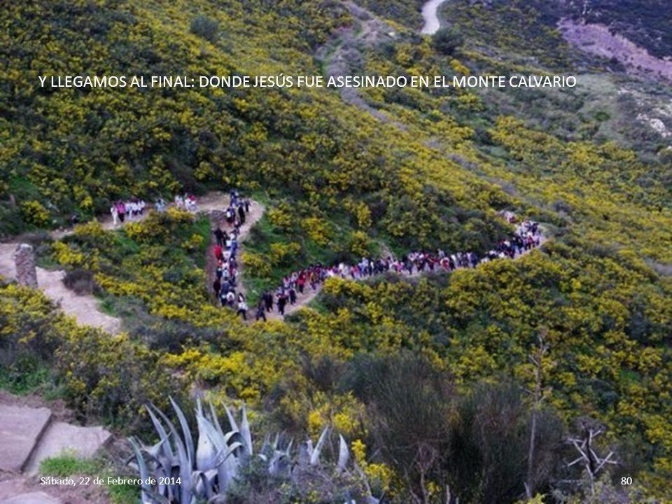 Sábado, 22 de Febrero de 201479 Campo de los Pastores, Belén, Israel