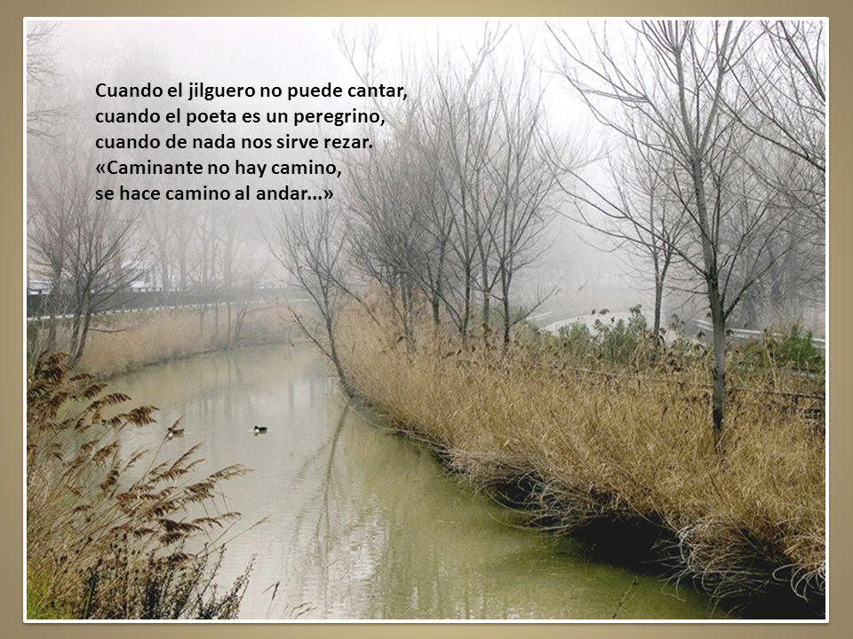 Riveras del Duero en Soria al que cantó Machado Hace algún tiempo en ese lugar donde hoy los bosques se visten de espinos se oyó la voz de un poeta gritar: «Caminante no hay camino, se hace camino al andar...» Murió el poeta lejos del hogar.