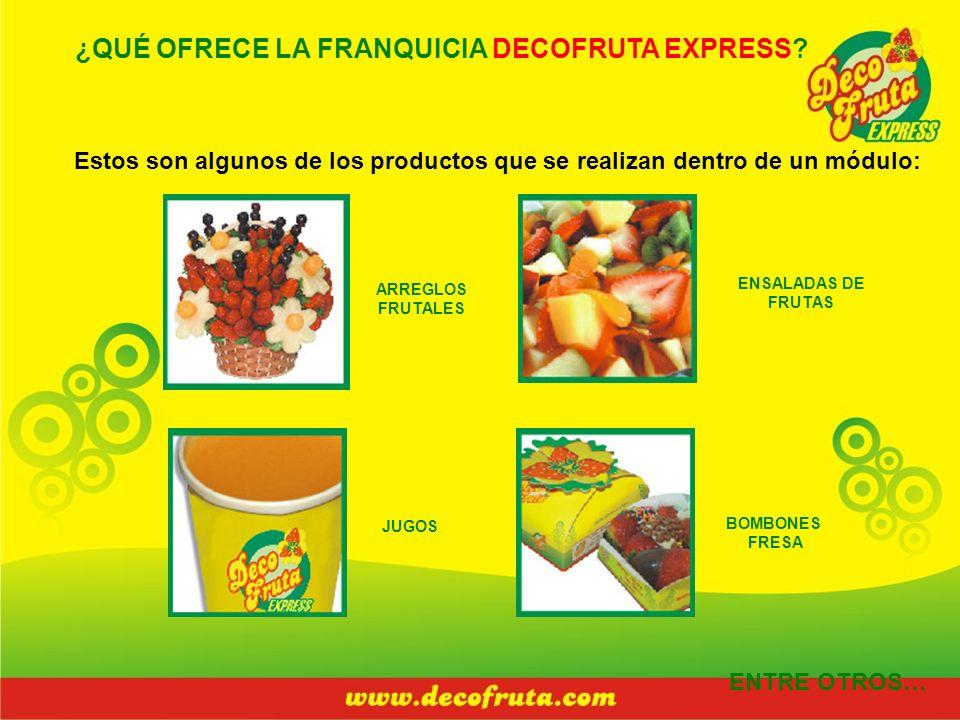 ¿QUÉ OFRECE LA FRANQUICIA DECOFRUTA EXPRESS? Estos son algunos de los productos que se realizan dentro de un módulo: ARREGLOS FRUTALES ENSALADAS DE FR