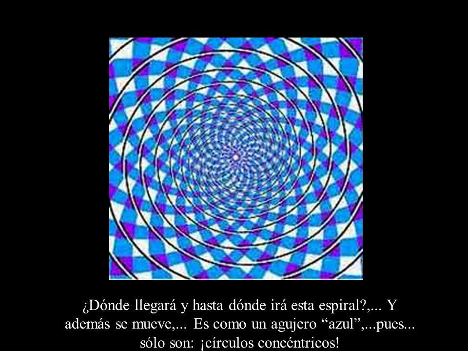¿Dónde llegará y hasta dónde irá esta espiral?,... Y además se mueve,... Es como un agujero azul,...pues... sólo son: ¡círculos concéntricos!