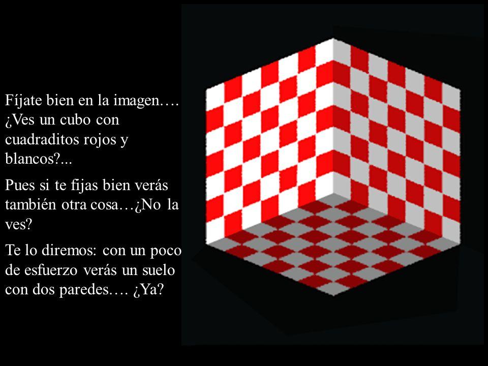 Fíjate bien en la imagen…. ¿Ves un cubo con cuadraditos rojos y blancos?... Pues si te fijas bien verás también otra cosa…¿No la ves? Te lo diremos: c