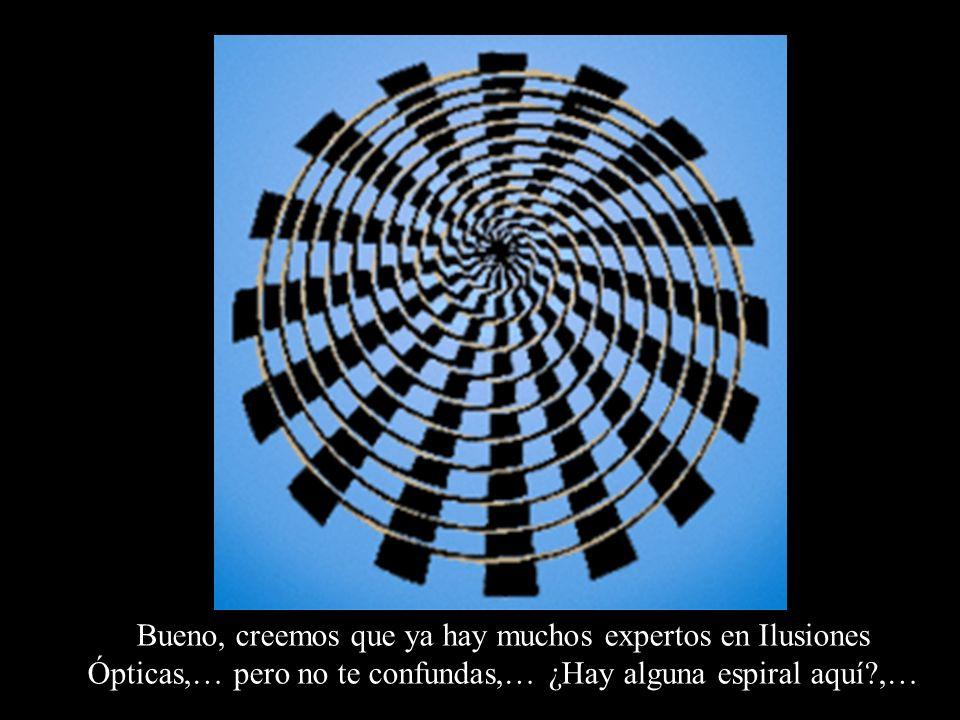 Bueno, creemos que ya hay muchos expertos en Ilusiones Ópticas,… pero no te confundas,… ¿Hay alguna espiral aquí?,…