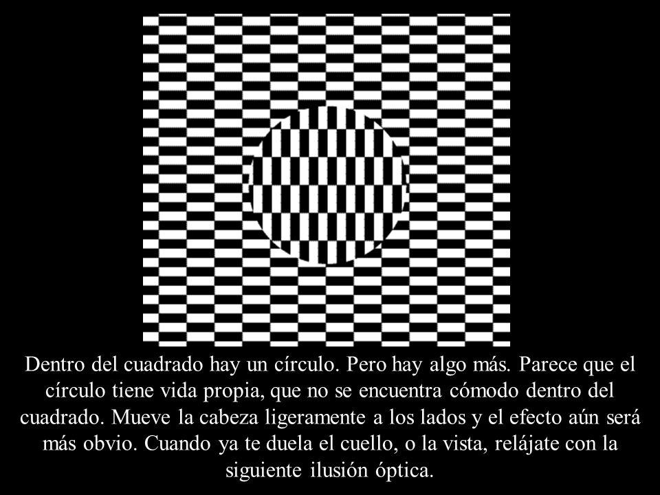 Dentro del cuadrado hay un círculo. Pero hay algo más. Parece que el círculo tiene vida propia, que no se encuentra cómodo dentro del cuadrado. Mueve