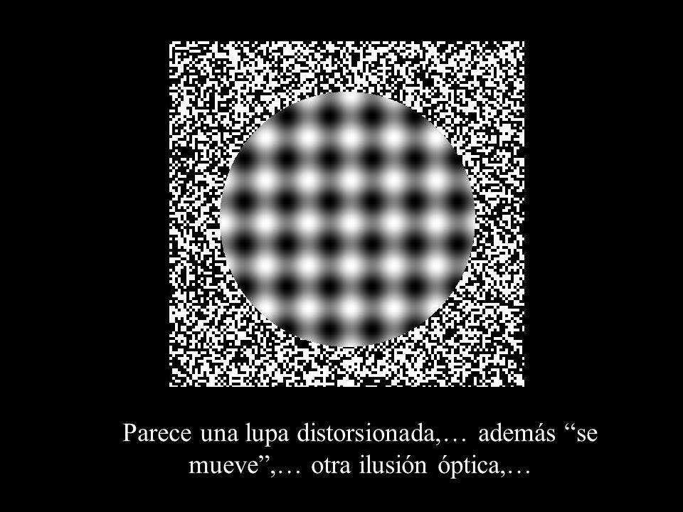 Parece una lupa distorsionada,… además se mueve,… otra ilusión óptica,…