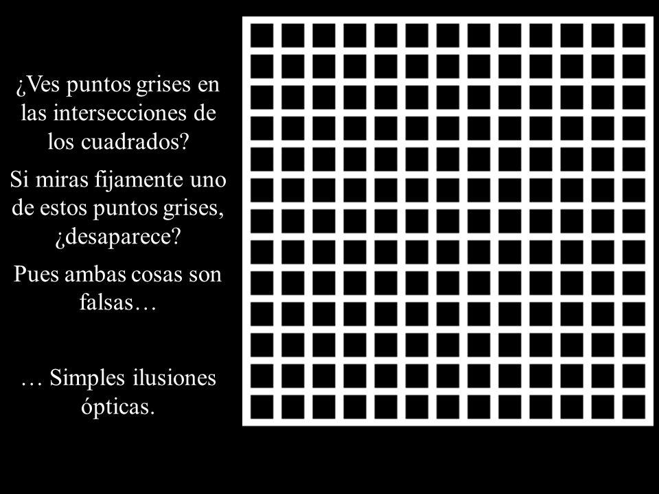 ¿Ves puntos grises en las intersecciones de los cuadrados? Si miras fijamente uno de estos puntos grises, ¿desaparece? Pues ambas cosas son falsas… …
