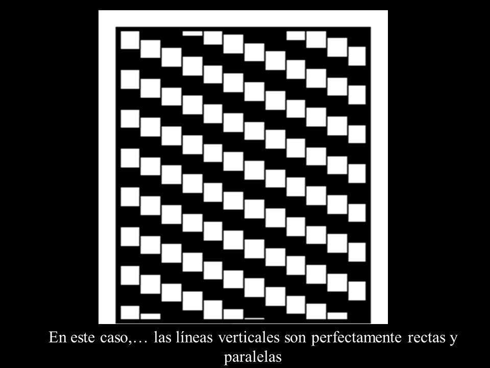 En este caso,… las líneas verticales son perfectamente rectas y paralelas