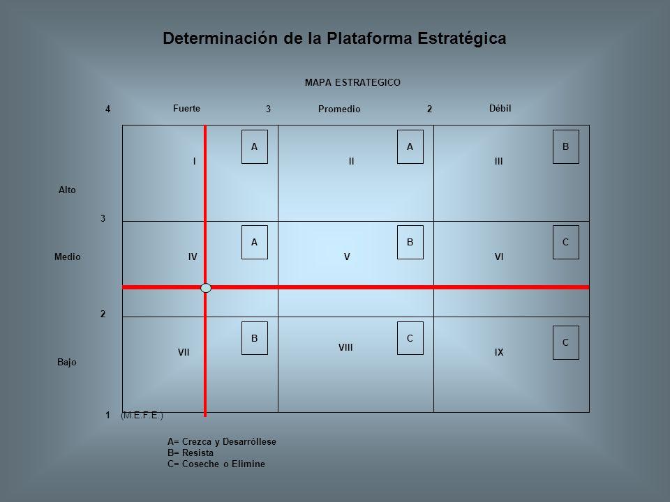 Determinación de la Plataforma Estratégica Fuerte A B A C C B A BC 3 4 2 23 1(M.E.F.E.) IIIIII IV V VII VI VIII IX Promedio Débil A= Crezca y Desarról