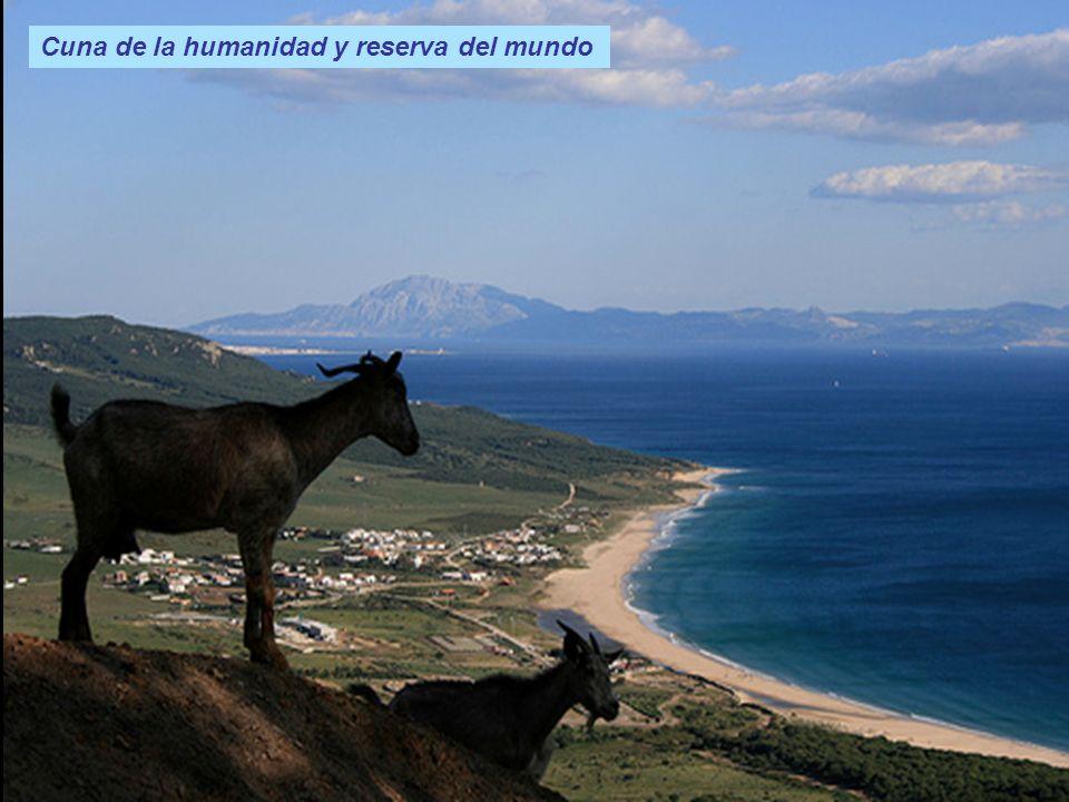 Angola Cuna de la humanidad y reserva del mundo