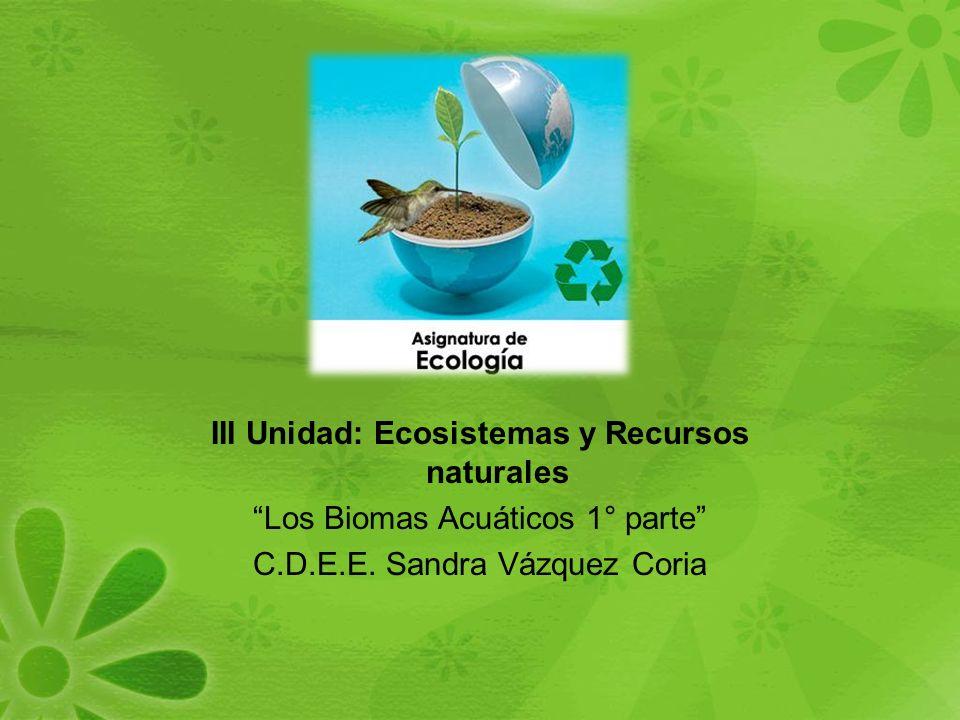 III Unidad: Ecosistemas y Recursos naturales Los Biomas Acuáticos 1° parte C.D.E.E.