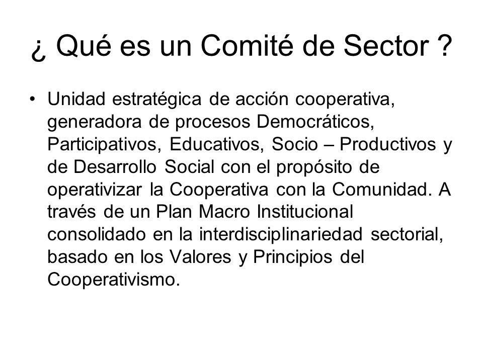 ¿ Qué es un Comité de Sector ? Unidad estratégica de acción cooperativa, generadora de procesos Democráticos, Participativos, Educativos, Socio – Prod