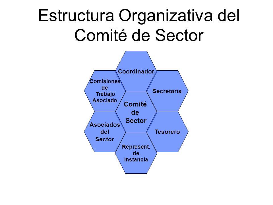 Coordinador Comité de Sector Represent. de Instancia Comisiones de Trabajo Asociado Asociados del Sector Secretaria Tesorero Estructura Organizativa d