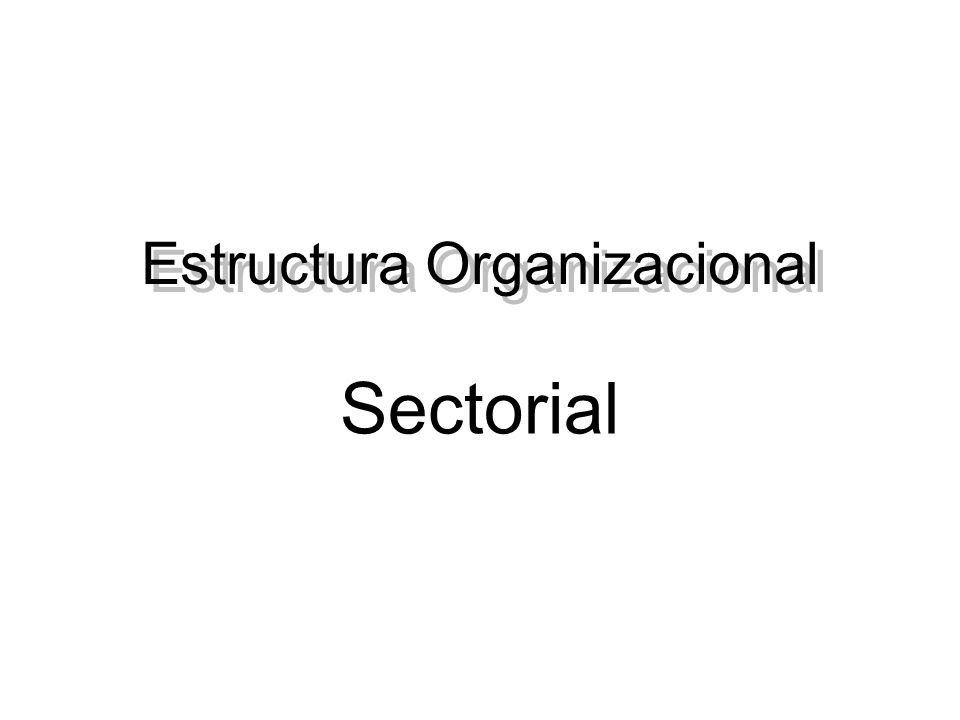 Estructura Organizacional Sectorial
