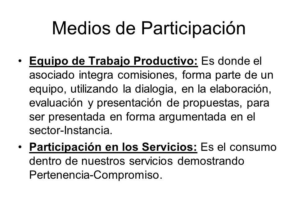 Equipo de Trabajo Productivo: Es donde el asociado integra comisiones, forma parte de un equipo, utilizando la dialogia, en la elaboración, evaluación y presentación de propuestas, para ser presentada en forma argumentada en el sector-Instancia.